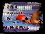 Discipline-resized-600